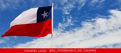 Gato Típico Chileno La bandera más linda del mundo