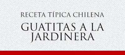 Gato Receta Típica Chilena Guatitas a la Jardinera