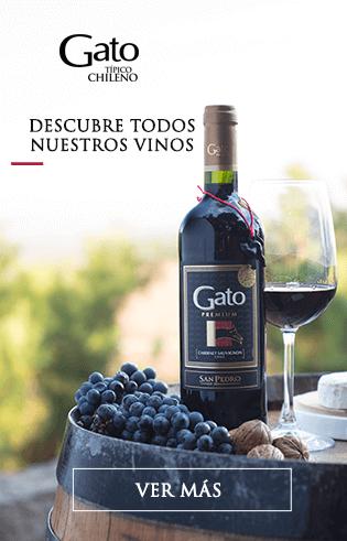 Descubre nuestros vinos