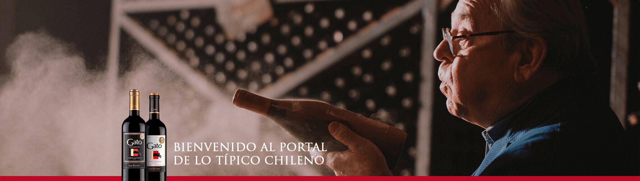 Vino Gato | Típico Chileno