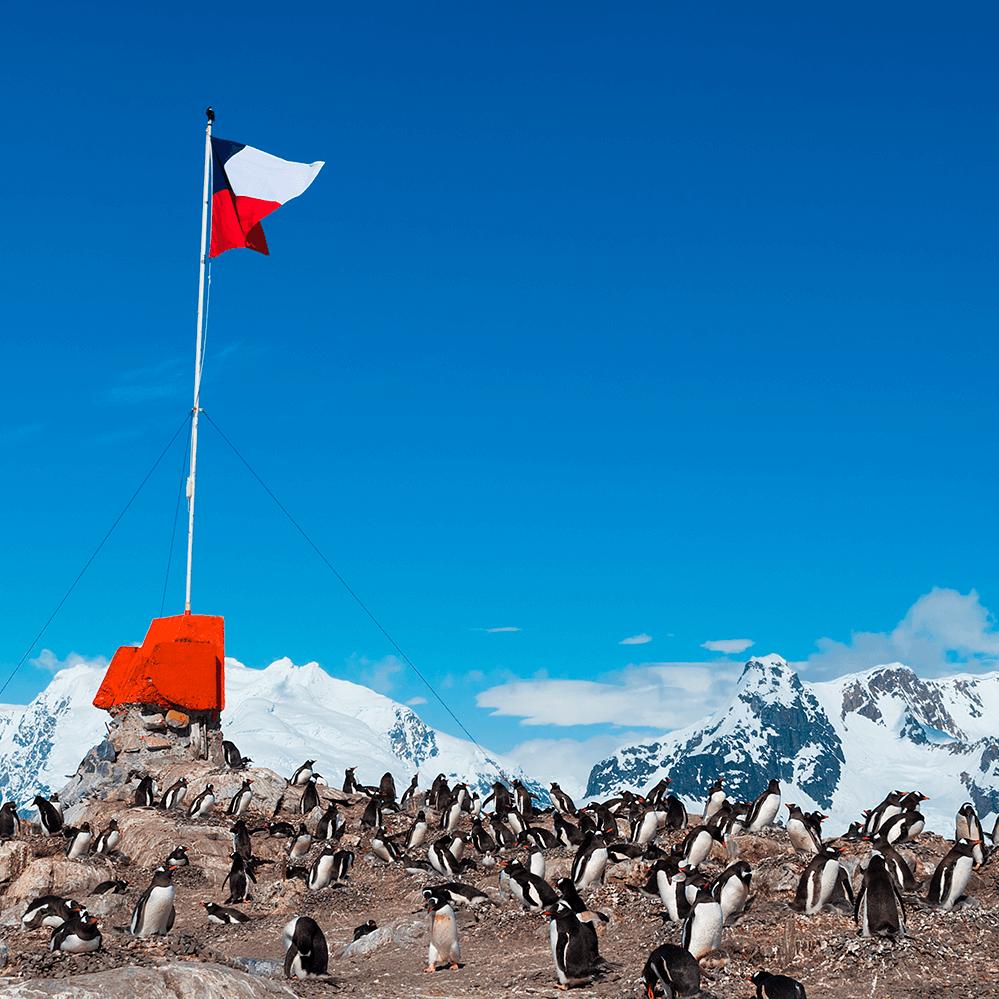 La Antártica Chilena