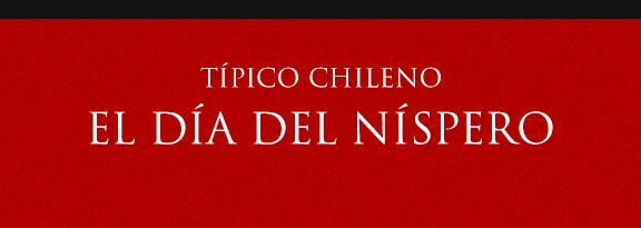 Gato Típico Chileno El Día del níspero