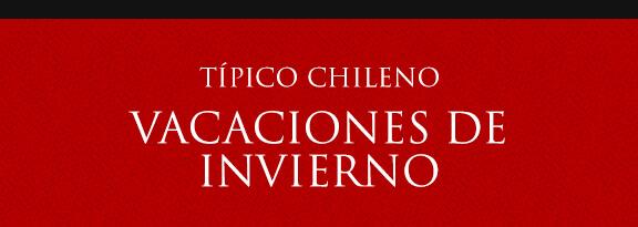 Gato Típico Chileno ¿VACACIONES DE INVIERNO?