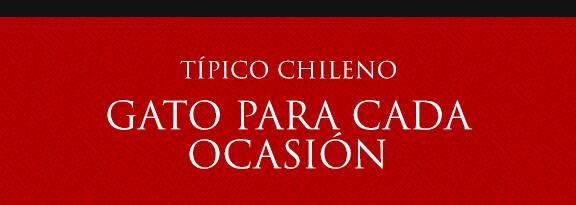Gato Típico Chileno UN GATO PARA CADA OCASIÓN
