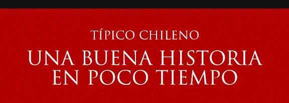 Gato Típico Chileno Buena Historia en Poco Tiempo