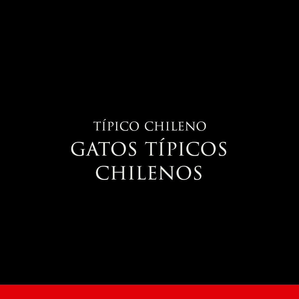 GATOS TÍPICOS CHILENOS