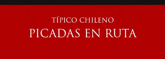 Gato Típico Chileno PICADAS EN RUTA