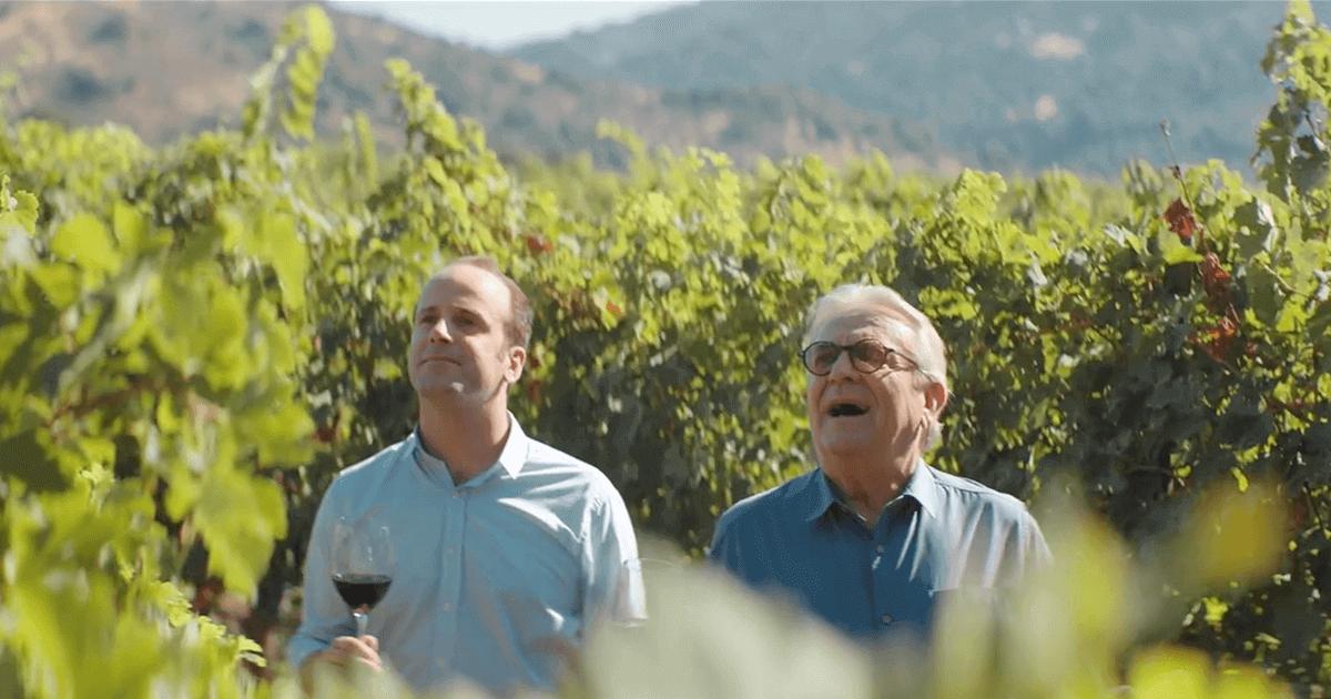 Buen Chileno | Vino Gato