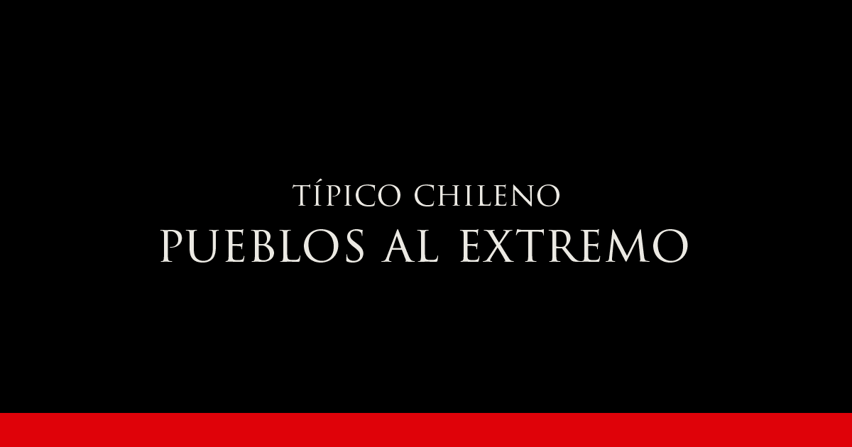 Gato Típico Chileno PUEBLOS AL EXTREMO